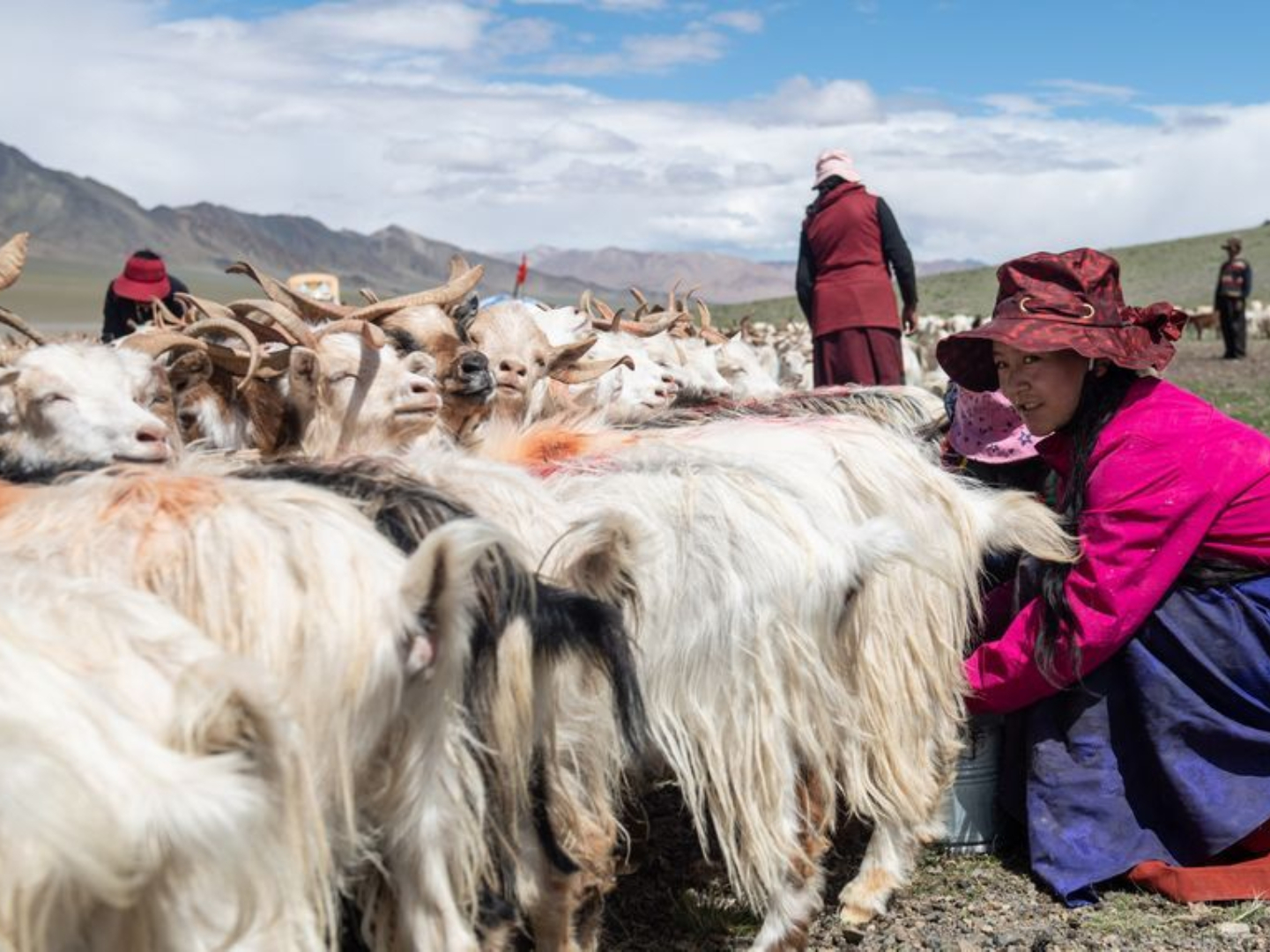 China's poverty relief fund tops 139 billion yuan in 2020