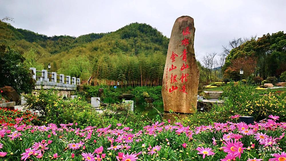 Xi stresses green development in Zhejiang tour