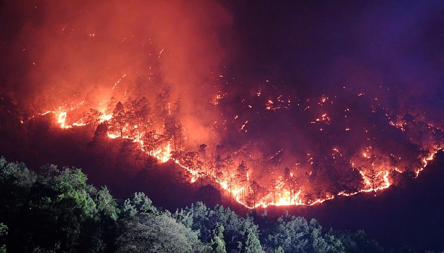 Firefighters battle forest fire in Sichuan