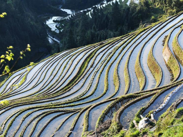 In pics: terraced fields in Bietong Village, SW China