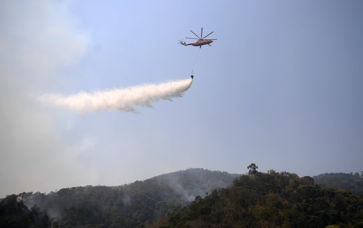 Forest fire put out in southwest China