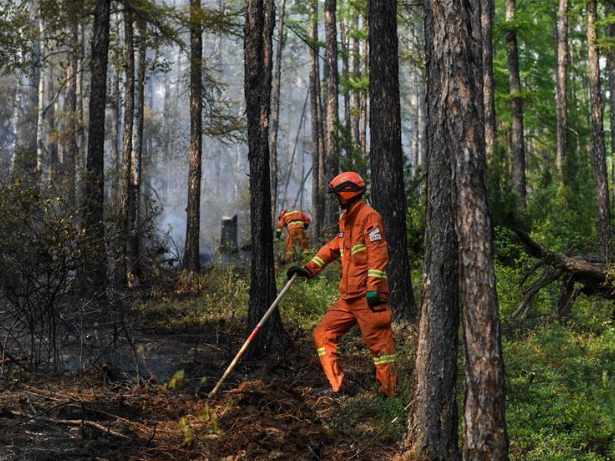 Forest fire under control in China's border province