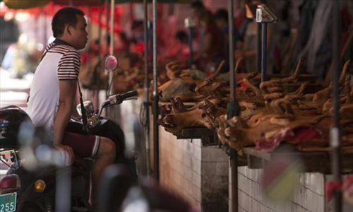 Shenzhen becomes first Chinese city to ban eating cats, dogs