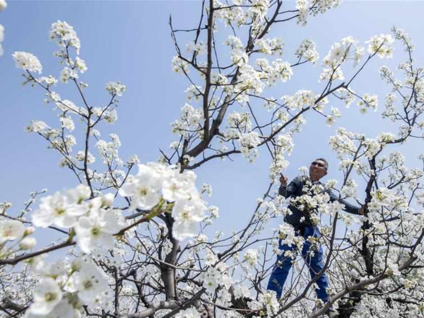 Spring farming underway in China
