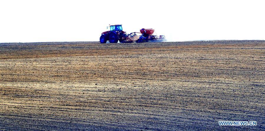 Farmers work in field on outskirts of Minsk, Belarus