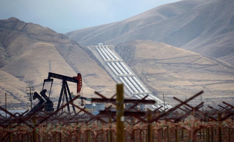 OPEC, allies consider output cut after price crash