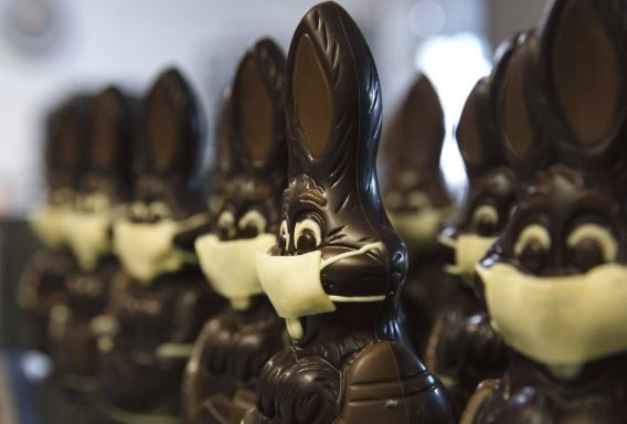 Bunnies to the rescue as virus hits Belgian chocolatiers