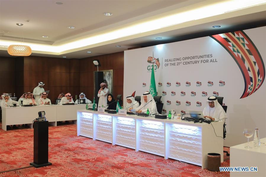 G20 Energy Ministers Meeting held in Riyadh, Saudi Arabia