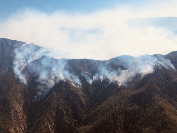 Investigation team set up to look into forest fire accident in SW China