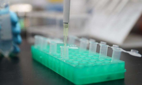 COVID-19 vaccine Phase II trials underway in Wuhan