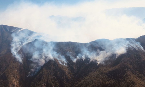 Boy suspected of starting forest fire in southwest China: police