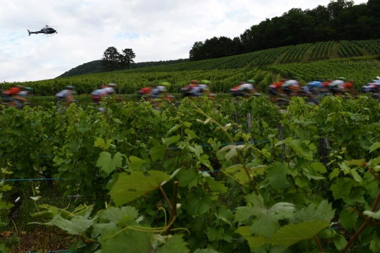 Cycling faces economic 'meltdown' if Tour de France cancelled