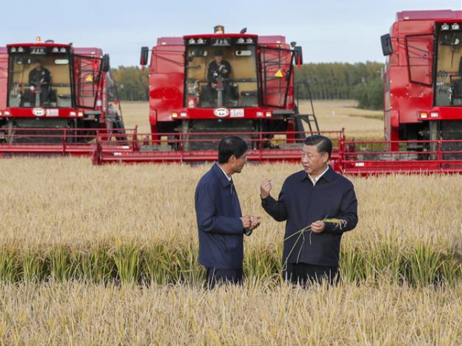 Xi's focus on food security pays off amid COVID-19 epidemic