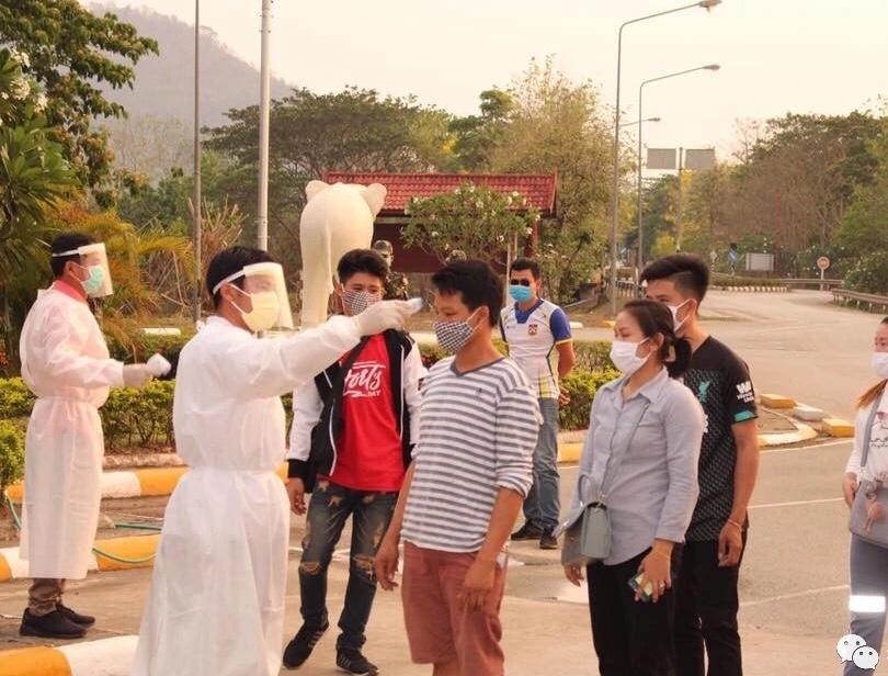 Singapore reports 447 coronavirus cases,  bringing total to 3,699