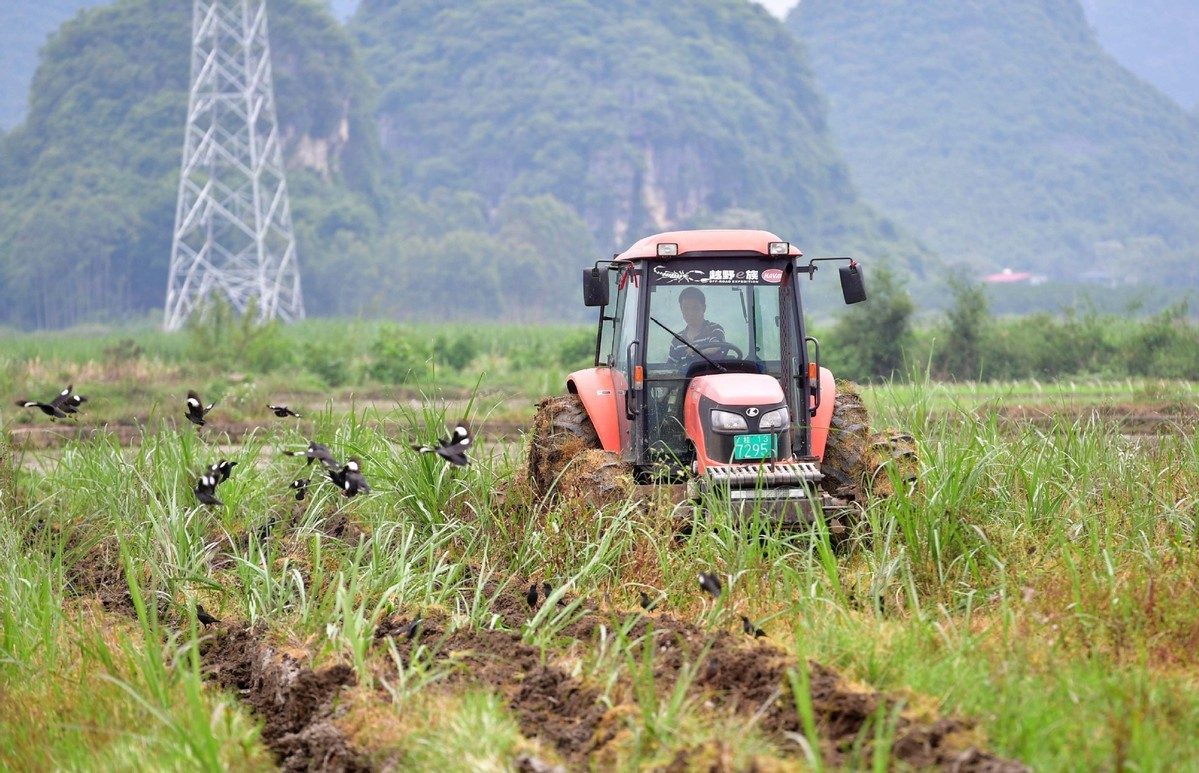 Spring farming on track for stable yields, officials say