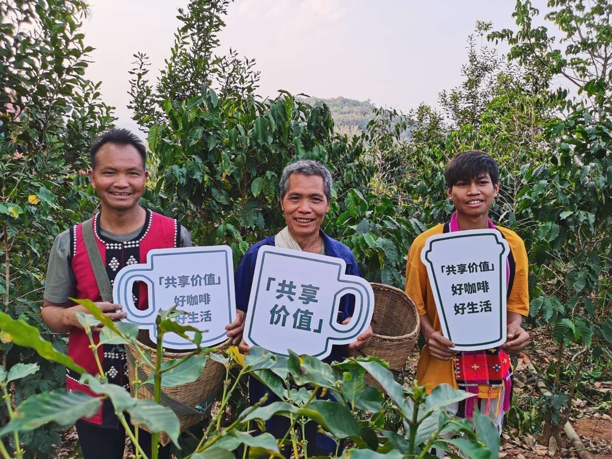 Starbucks, poverty foundation launch coffee farming initiative
