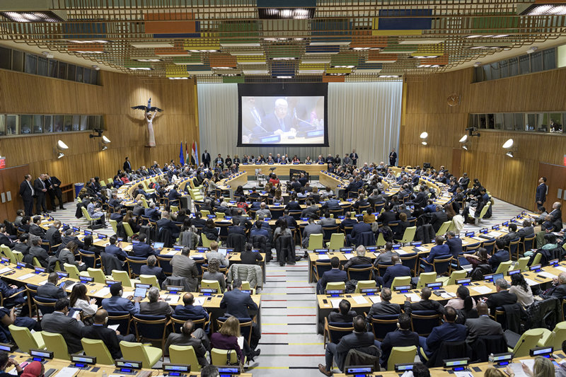 G77, China voice support for WHO in COVID-19 fight: statement