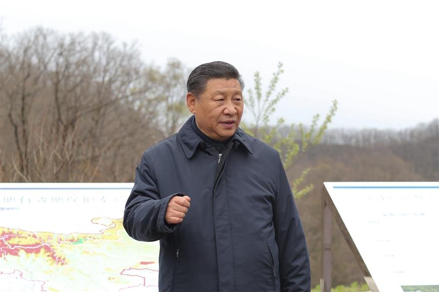 Xi inspects Qinling Mountains, urges officials to be ecological environment guardians