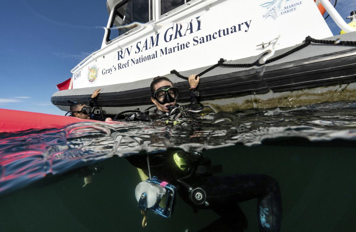 Trashed oceans find current of new hope
