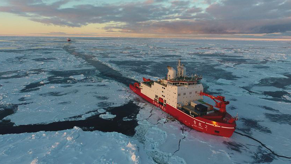 China's polar icebreakers back home after 36th Antarctica expedition