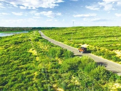Thousand-year desert about to 'disappear' in NW China
