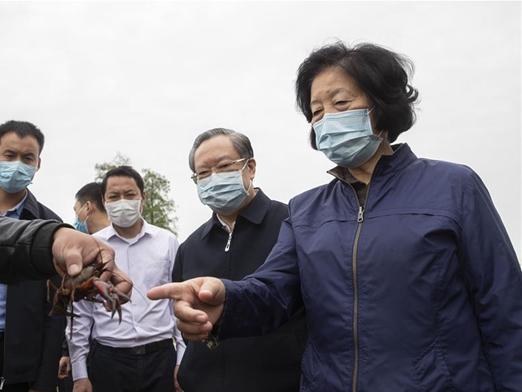 Vice premier stresses continuous, regular epidemic control measures
