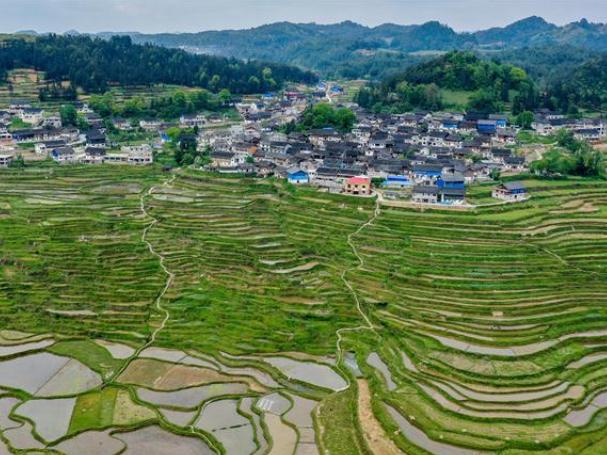 Scenery of Gaoyao terraced fields in Guizhou
