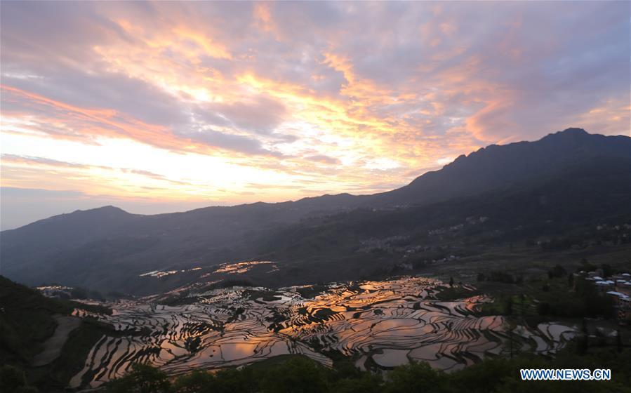 Beautiful scenery of terraced fields during sunrise in Yunnan