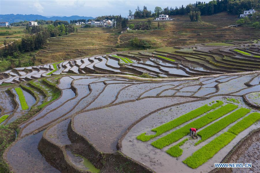 Farmers work in terraced fields in Gongxian, Sichuan