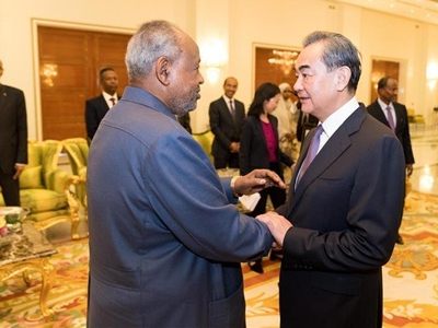 China steps up support for Djibouti, Cote d'Ivoire to fight COVID-19: official