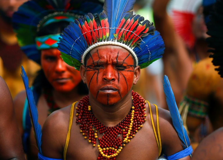 Brazil's Salgado leads stars in Amazon COVID-19 appeal to president