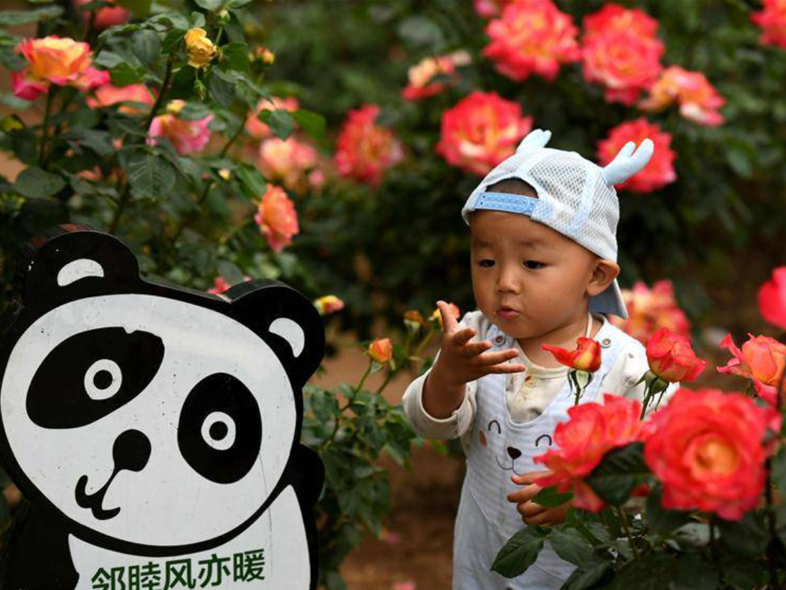 Chinese tourists take over 100 million trips for May Day holiday season