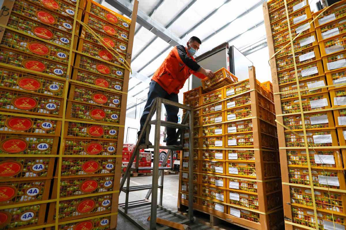China-ASEAN trade to blossom in hard times