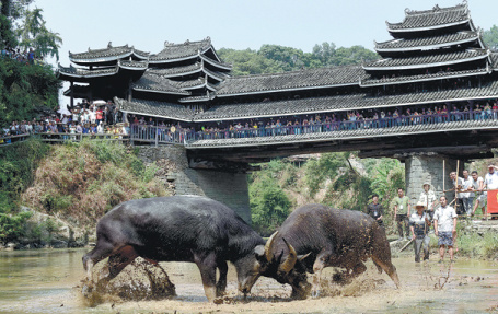 Tourism helps China's battle against poverty: official