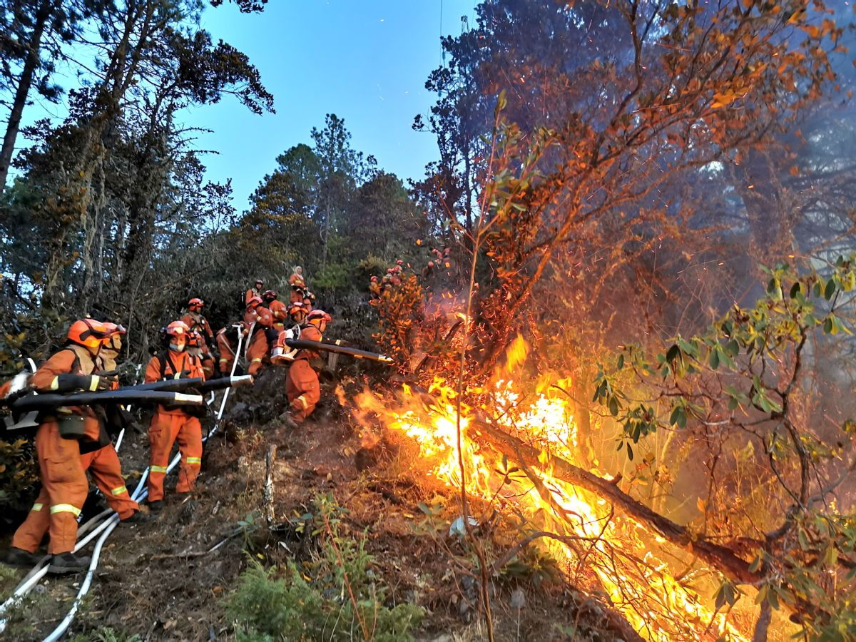 High-level group sent to Sichuan to tackle risk of deadly forest fires