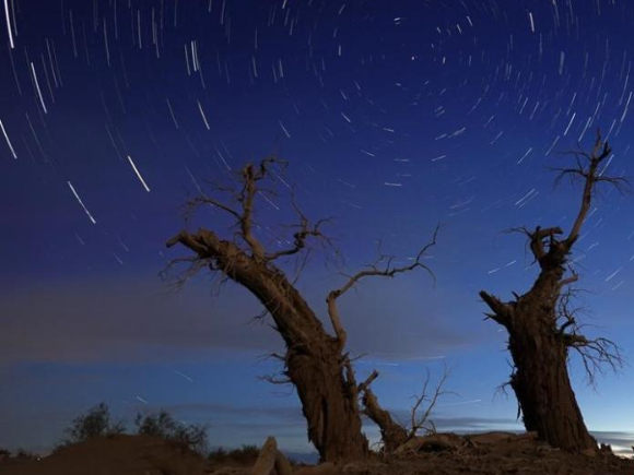 Peaceful starry night at Tarim Basin in Xinjiang