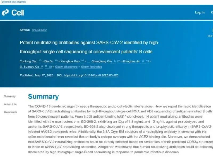 PKU-led team finds effective SARS-CoV-2 neutralizing antibodies