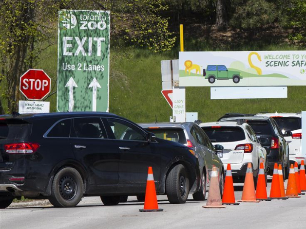 Toronto Zoo reopens to public with drive-thru experience