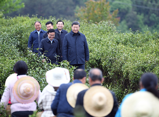 Xi's use of tea in governance and diplomacy