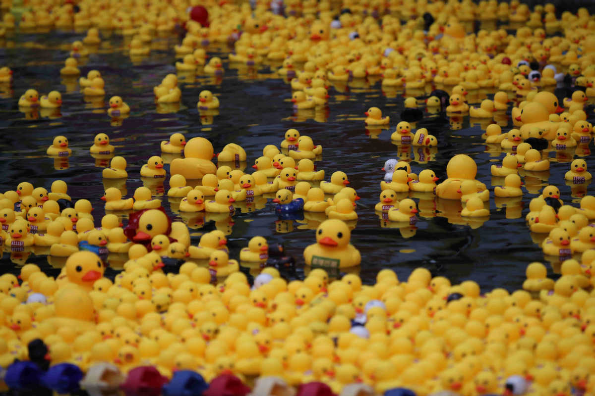 Rubber duck marathon was held in Xi'an