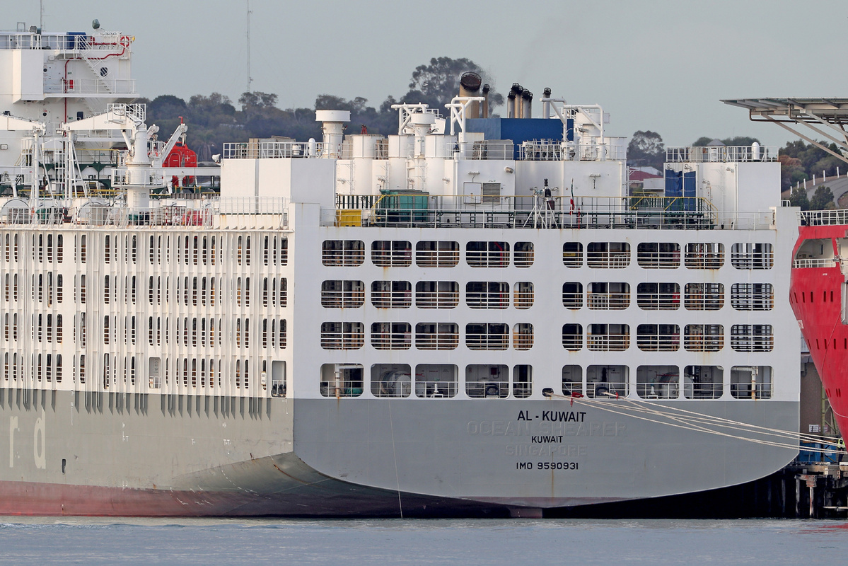 COVID-19 cluster detected on Australian live animal export ship