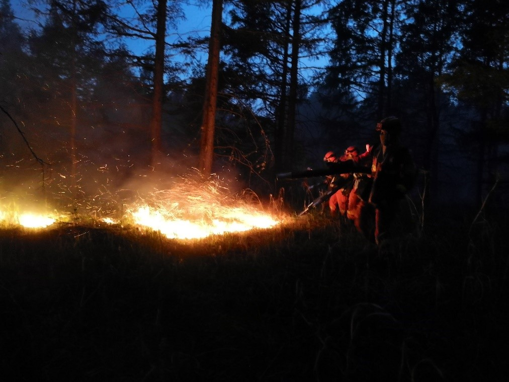 Forest fire under control in China's Inner Mongolia