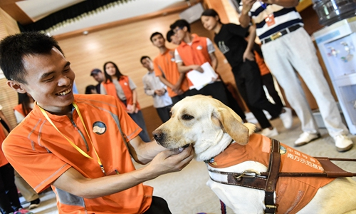 Shenzhen to implant all registered dogs with ID microchips