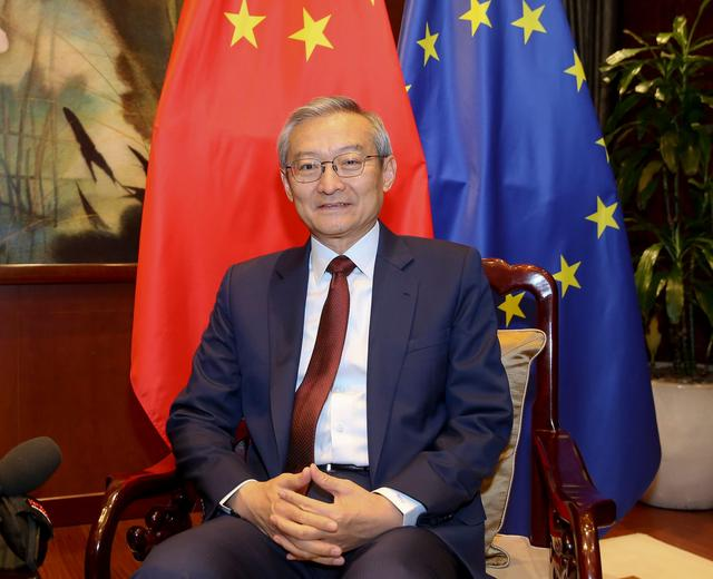 Mutually beneficial cooperation cornerstone of China-EU relations: Ambassador
