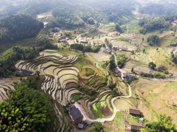 Mist surrounds historic terraced fields in Hunan
