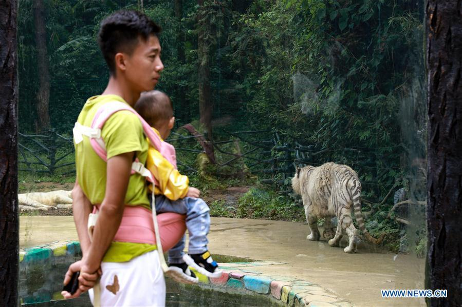 Zoos in Guiyang reopen to public