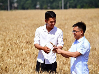 In pics: changes in China's agricultural production