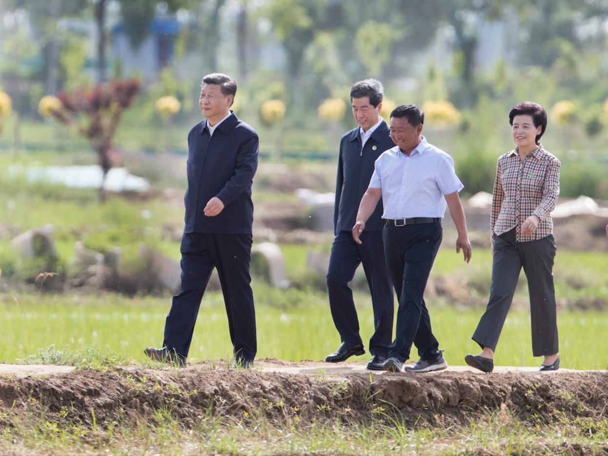 Xi inspects rural development, ecological protection programs in Northwest China