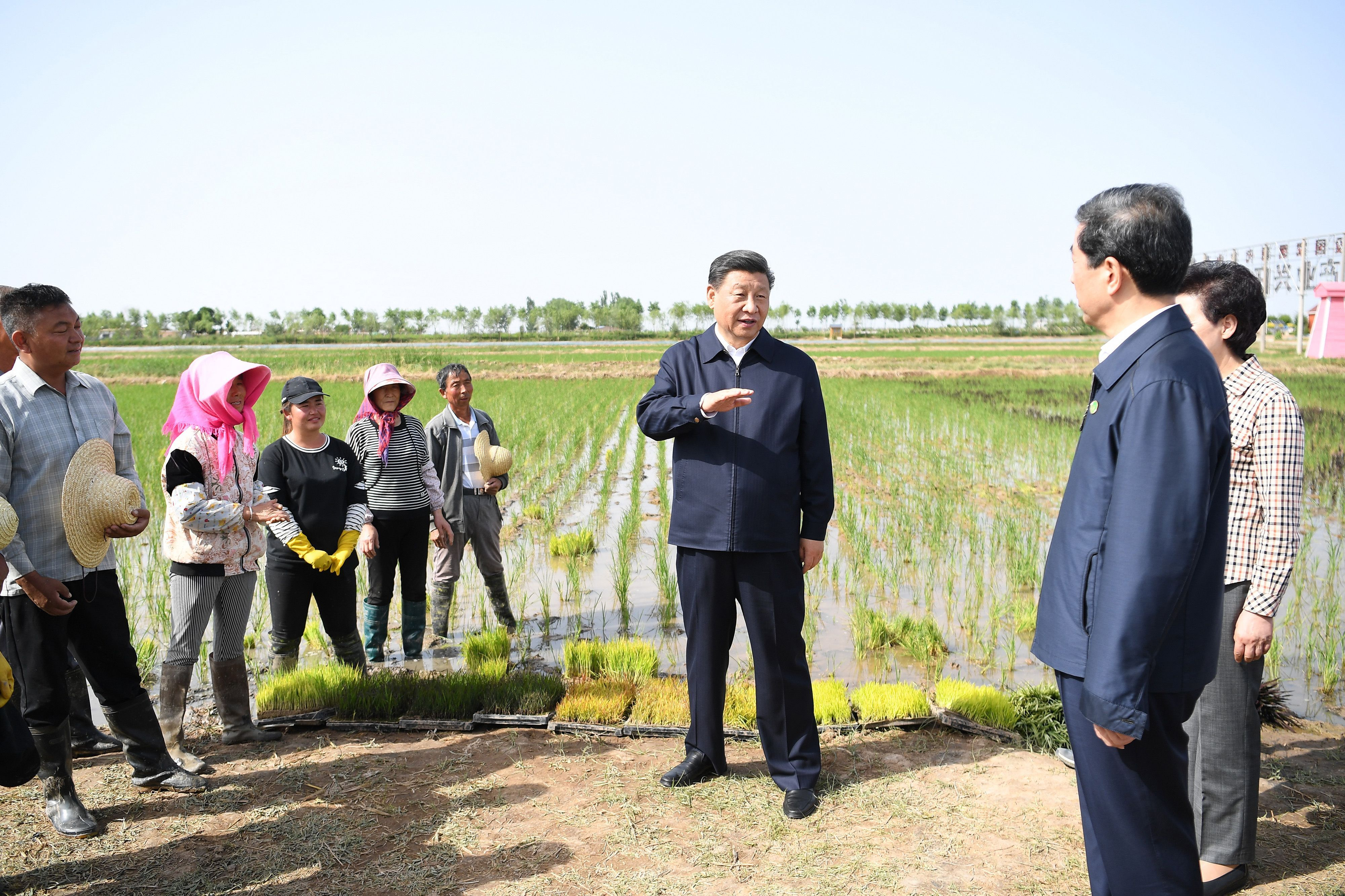 Xi stresses developing water-conserving agriculture