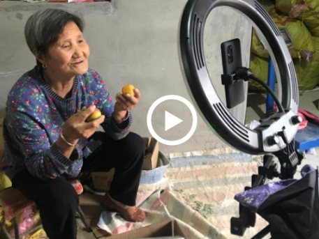 Woman, 80, gains fame with apricots
